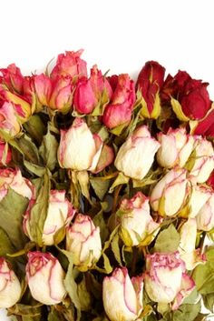 DIY How to Dry Roses. 2 methods. Also has links about how to work with dried flowers.