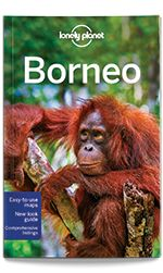 eBook Travel Guides and PDF Chapters from Lonely Planet: Understand Borneo and Survival Guide (PDF Chapter)...