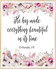 God created everything bible