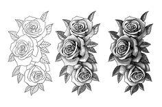 Disenos De Rosas Para Tatuar En El Brazo Para Mujeres Victor - Diseos-de-rosas
