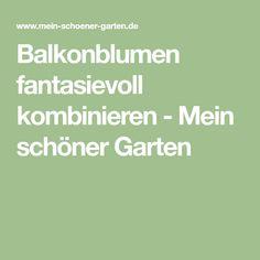 Balkonblumen fantasievoll kombinieren - Mein schöner Garten