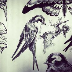 birds drawing  flash tattoo by Tommy @ One O Nine Barcelona