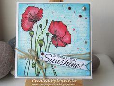 Magenta: Sending you sunshine poppies! / Coquelicots et rayon de soleil