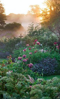 Abendstimmung im Cottage Garten