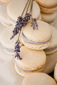 Honey Lavender Macarons | Hint of Vanilla