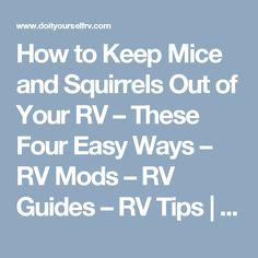 How to Keep Mice and Squirrels Out of Your RV – These Four Easy Ways – RV Mods – RV Guides – RV Tips | DoItYourselfRV
