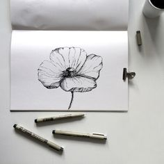 An overview of all the inkylines drawings and sketches. Pen Sketch, Drawing Sketches, Drawings, Flower Outline, Flower Art, Poppy Drawing, Poppies, How To Draw Hands, Watercolor