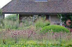 HTE53166 - Bury Court - Design, Piet Oudolf