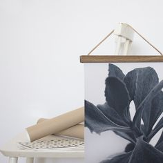 Succulent Plant print, botanick prints and posters -  By Garmi