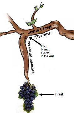 Jesus Is The True Vine Craft