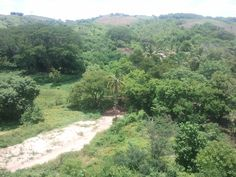 Hermosa vista del arroyo seco