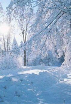 Wallpaper With Snow Winter Photography – Smile Images Winter Szenen, Winter Magic, Winter Walk, I Love Snow, Winter Wallpaper, Christmas Wallpaper, Winter Photos, Snow Scenes, Landscape Wallpaper