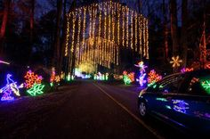 Fantasy in Lights Callaway Gardens