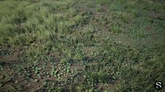 asset Grass Pack grass nature environment, available formats FBX, UASSET, ready for animation and other projects Wild West Games, Clover Field, Castle Project, Game Textures, Vintage Typography, Typography Design, Graphic Design Tips, Desert Plants, Unreal Engine
