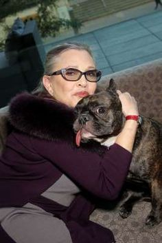 Carrie Fisher's Beloved Dog Gary by Her Side at Hospital After Heart Attack: Report People 21 hrs ago. Star Wars Princess Leia, My Princess, Carrie Frances Fisher, Gary Fisher, Hbo Documentaries, Debbie Reynolds, Star Wars Clone Wars, Carry On, French Bulldog