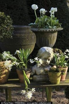 Thrilling About Container Gardening Ideas. Amazing All About Container Gardening Ideas. Garden Urns, Garden Statues, Garden Planters, Garden Sculpture, Potted Garden, Potted Plants, Container Plants, Container Gardening, Gardening Books