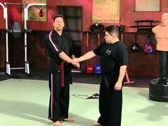 Scott Rogers Authentic Pressure Point - Volume 1: Fundamentals of Pressure Points: Arms and Set Ups