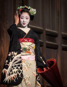 "geisha-kai: "" January maiko Mamefuji in stunning snow kimono by Gaap on Photohito """