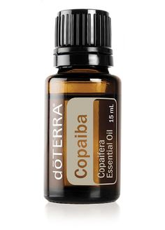 - Want to know all about cedarwood essential oil? Here is all there is to know about doTERRA cedarwood essential oil uses including DIY & diffuser blends. Cedarwood Essential Oil Uses, Copaiba Essential Oil, Essential Oils For Headaches, Essential Oil Blends, Doterra Cedarwood, Cedarwood Oil, Copaiba Oil, Camomille Romaine, Oregano Oil Benefits