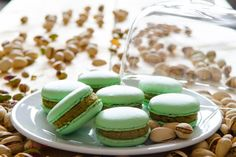 Macarons mit Pistazien-Ganache.