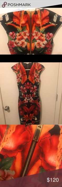 Ted Baker Toucan Print midi dress A Ted baker dress will turn heads! Beautiful print w/ sexy gold zipper down the back. Open to reasonable offers Ted Baker Dresses Midi