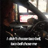 12. You love Taco Bell now more than ever before.