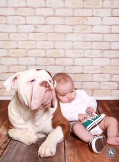 Amanda Abraham Photography specializing in newborn and child photography. Using fun props to enhance your photo experience in the Metro Detroit area! www.amandaabrahamphotography.com Baby girl 3 Month session in studio with her pet dog!