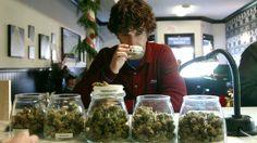 Legalisierung von Mariuhana. Washington, Colorado