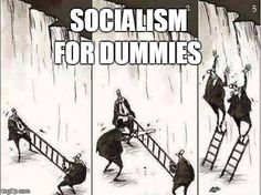 Funny pictures about Politics in a nutshell. Oh, and cool pics about Politics in a nutshell. Also, Politics in a nutshell. Liberal Logic, Liberal Hypocrisy, Politicians, True Memes, Conservative Politics, Conservative Quotes, Funny Politics, In A Nutshell, Political Cartoons