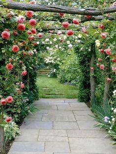 Rosenpergola med bondromantik