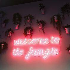 Frederic Seleay #jungle #work space #cowork