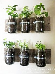 Mason Jars + Wood Plank = Wall Planter ... would make a totally cute herb garden??