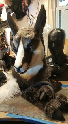 The head of a realistic wolf fursuit, for lion witch ...