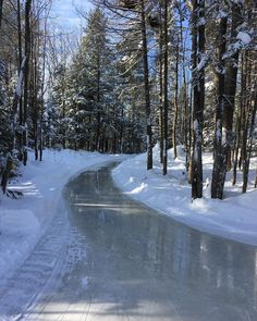 Ice Skating Trails in Canada and U.S. - Forest Skating Trails