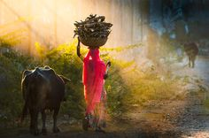 Going Home by Jungshik Lee on 500px