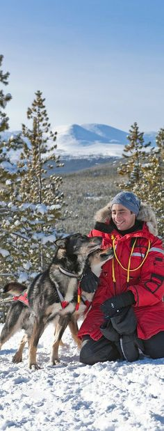 Dog sledding in the Yukon is an adventure to remember.  Photo: Yukon Government / F Mueller