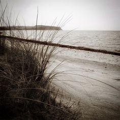 Aborg Strand #visitfyn #fyn #nature #visitdenmark #naturelovers #natur #denmark #danmark #dänemark #landscape #assens #mitassens #vildmedfyn #fynerfin #assensnatur #sand #vielskernaturen #visitassens #instapic #picoftheday #sea #january #sea #danishbeach #travelpics