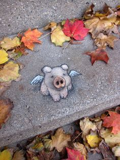chalk street art by artist david zinn 3d Street Art, Street Art Graffiti, Street Artists, Graffiti Artists, David Zinn, Land Art, Pig Art, Sidewalk Chalk Art, Animal Magic