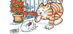 La gabbianella e il gatto – disegni da colorare | Unione Musicale