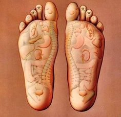 Our each and every body part has an imprint in our FEET! These pressure points are used during the feet massage.Our each and every body part has an imprint in our FEET! These pressure points are used during the feet massage. Health And Beauty Tips, Health Tips, Health And Wellness, Health Fitness, Health Care, Health Benefits, Girls Secrets, Foot Massage, Thai Massage