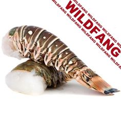Langusten Schwänze – Rock Lobster Tails, Wildfang aus der Karibik, roh, groß, ca. 375 g pro Stück