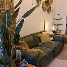 Deze groene stoere bank is voor de durvers onder ons. Kies je opstelling, stof, leder en kleur zelf. Couch, Furniture, Home Decor, Settee, Decoration Home, Sofa, Room Decor, Home Furnishings, Sofas