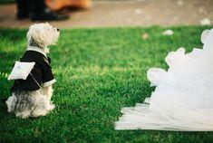 Kerri and Scott | Bonita Bay Club Wedding | Bonita Springs FL