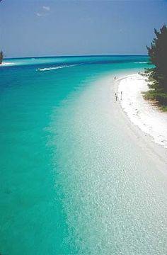 summer vaca this year - check out Anna Maria island, Florida.