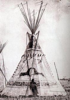 C W Carter's Cheyenne photos | www.American-Tribes.com
