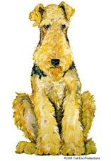 All about Airedale Terriers Welsh Terrier, Airedale Terrier, All Dogs, Dogs And Puppies, Doggies, Terrier Breeds, Dog Breeds, Animals And Pets, Cute Animals