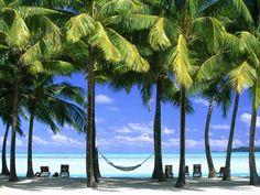 Dating-Orte in Palmenstrand