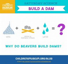 [BLOG] Saturday Science: Build a Dam | The Children's Museum of Indianapolis
