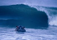 """""""Gabon's Loango National Park: In the land of the surfing hippos."""""""