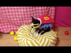 Dog Riding Roomba - Superhero Hamburger Costume - YouTube #puppy #dog #terrier #bostonterrier #roomba #irobot #dogsonroombas #roombadog #youtube #video #costume #superhero #hamburger #nationalhamburgerday #bbq #supervillan #bandit #cape #mask #cheeseburger